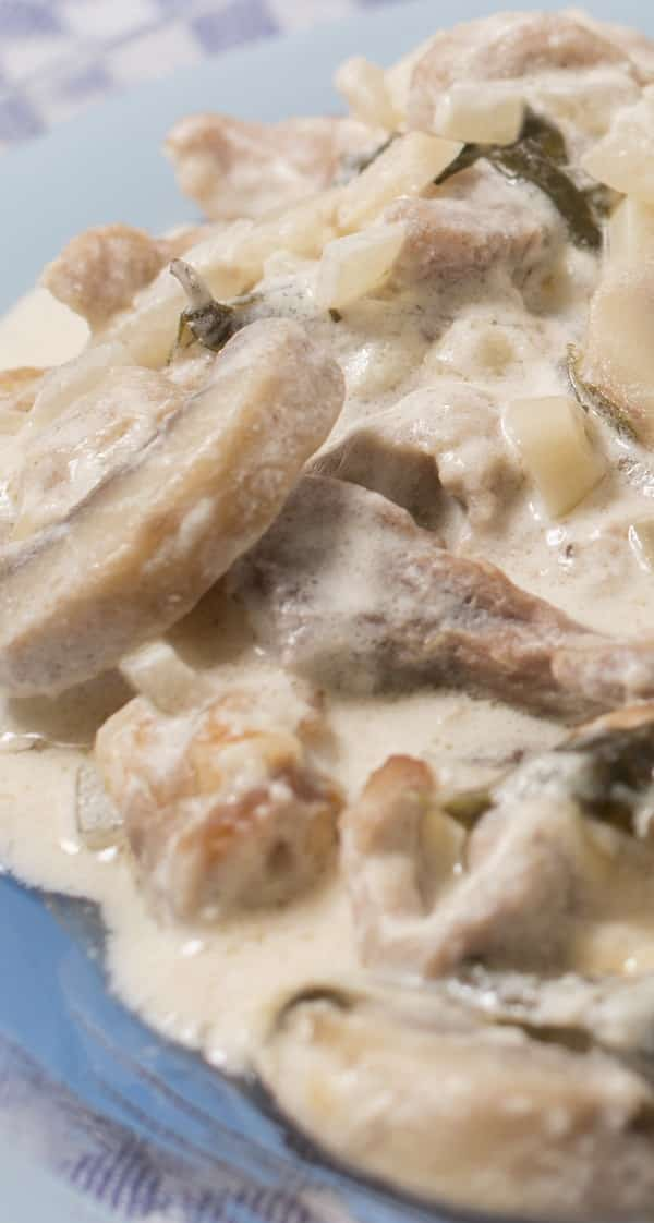 slow cooker pork stroganoff