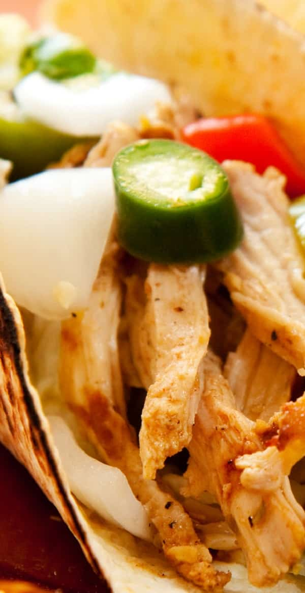 pressure cooker beer-braised chicken tacos