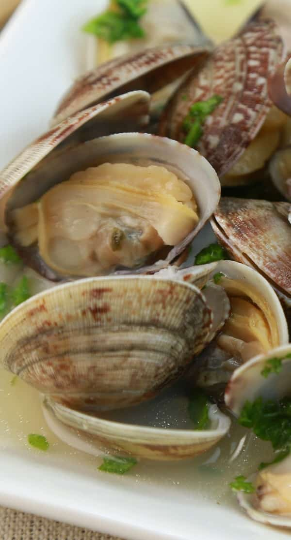 pressure cooker steamed clams in lemon wine broth