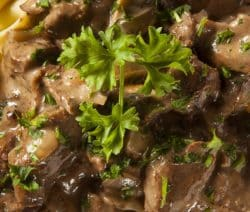 slow cooker beef stew with noodles recipe