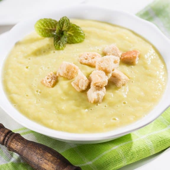 slow cooker vgetarian vichyssoise soup recipe